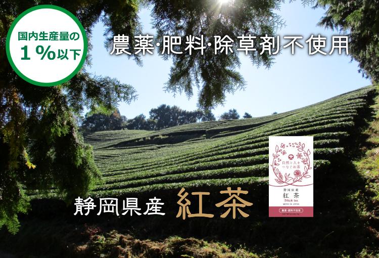 農薬と肥料不使用のオーガニックの紅茶